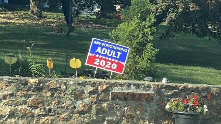 Are Modern Politics a Joke?